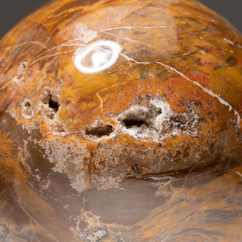 "Polished Petrified Wood Sphere from Madagascar (4.25"", 3.6 lbs)"
