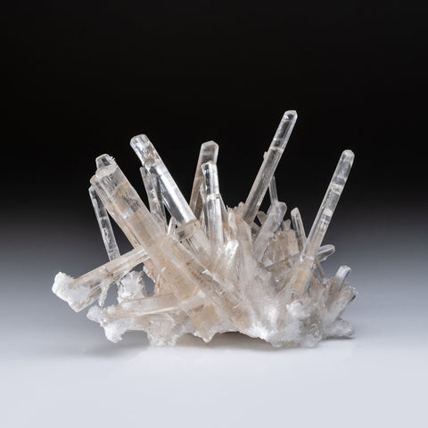 Gypsum var. Selenite from Naica District, Saucillo, Chihuahua, Mexico