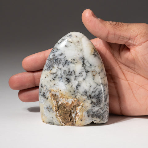 Dendritic Quartz Agate Freeform from Madagascar (.6 lbs)