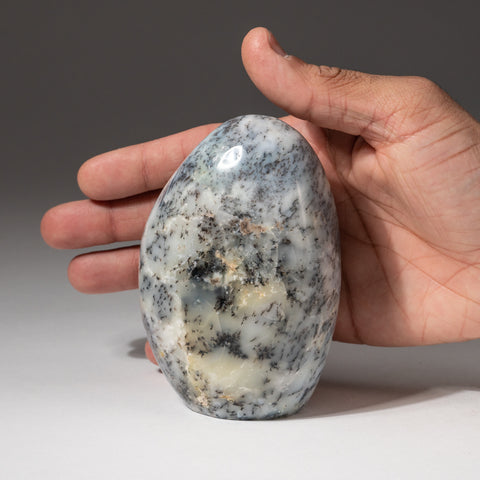 Dendritic Quartz Agate Freeform from Madagascar (1.2 lbs)