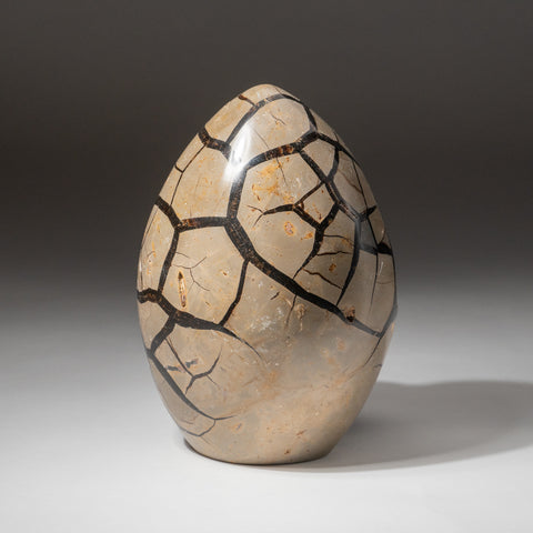Septarian Druzy Egg Freeform from Madagascar (7.2 lbs)