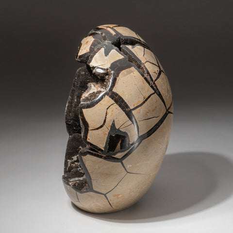 Septarian Druzy Egg Freeform from Madagascar (8.6 lbs)
