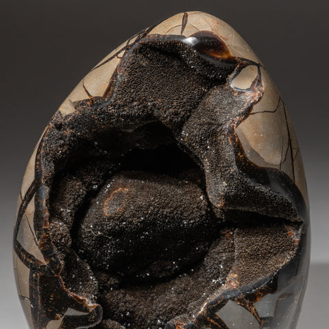 Septarian Druzy Egg Freeform from Madagascar (11.6 lbs)