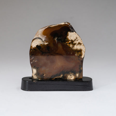 Polished Agate Slice on Wooden Stand (420.3 grams)