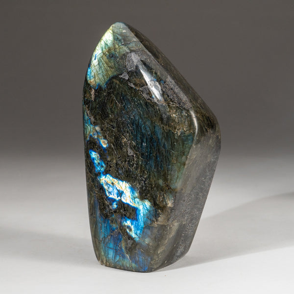 Polished Labradorite Freeform from Madagascar (3.8 lbs)