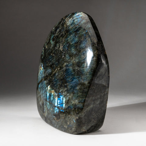 Polished Labradorite Freeform from Madagascar (16.4 lbs)