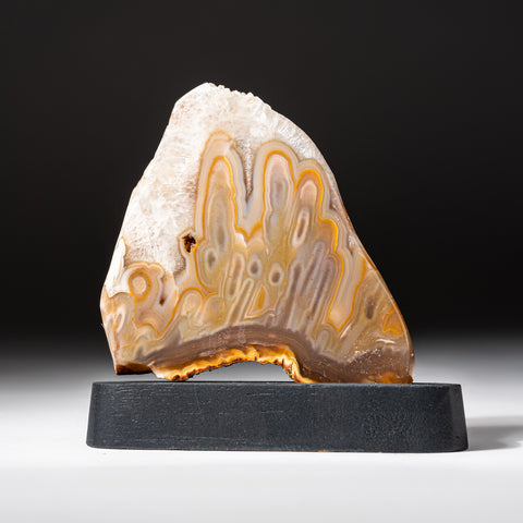 Polished Natural Agate Slice on Wooden Stand (168 grams)