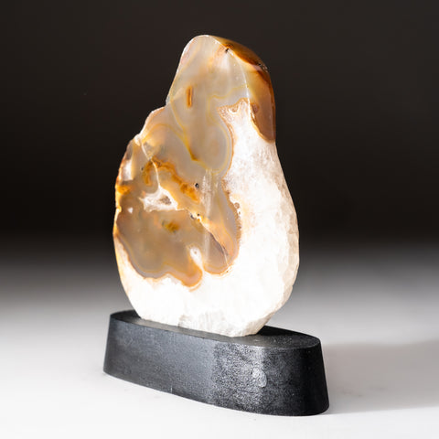 Polished Natural Agate Slice on Wooden Stand (305 grams)