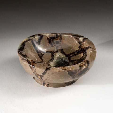 Polished Septarian Dish from Madagascar (2 lbs)