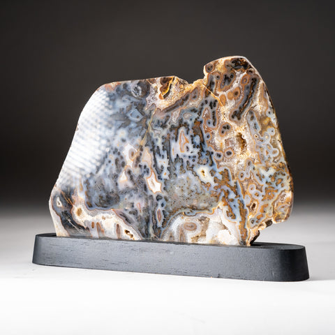 Polished Natural Agate Slice on Wooden Stand (1.8 lbs)