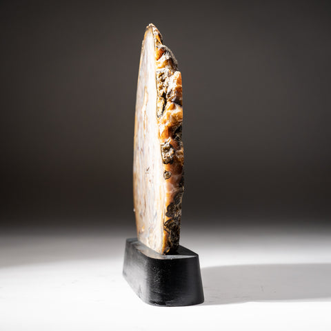 Polished Natural Agate Slice on Wooden Stand (2.2 lbs)