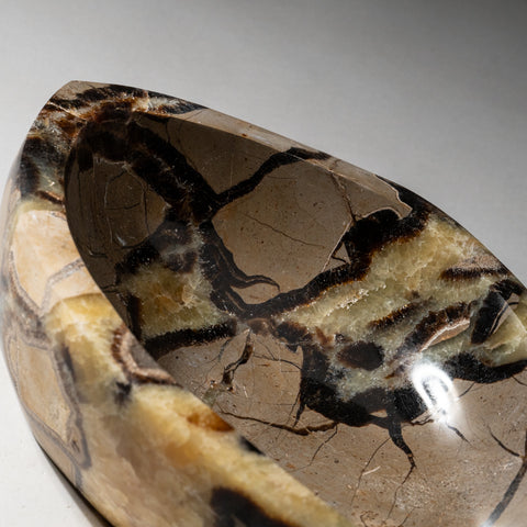 Polished Septarian Dish from Madagascar (3.8 lbs)