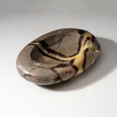 Polished Septarian Dish from Madagascar (1.6 lbs)