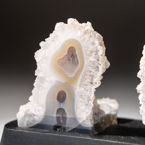 Natural Agate Slices on Wooden Stand (1.5 lbs)