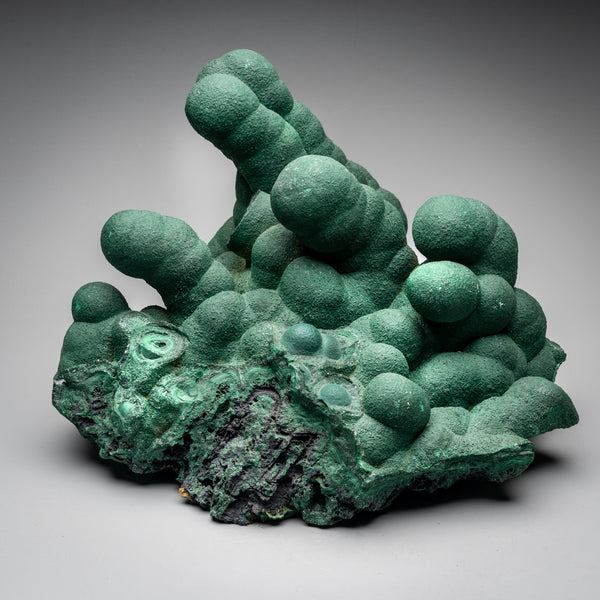 Malachite Stalactite from Kambove Mine, Katanga Province, Democratic Republic of the Congo