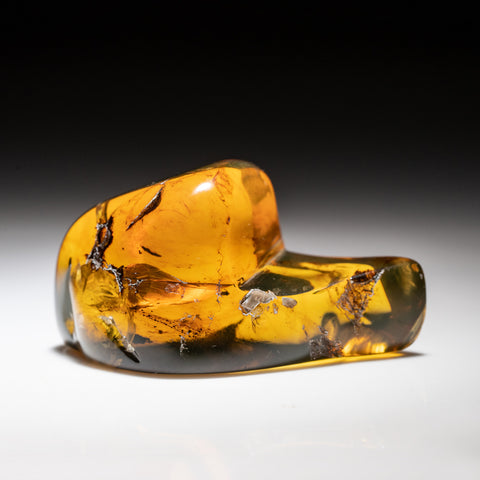 Amber from Chiapas, Mexico (24.8 grams)