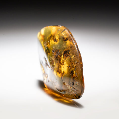 Amber from Chiapas, Mexico (22.3 grams)