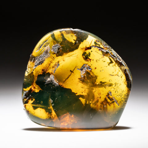 Amber from Chiapas, Mexico (19.7 grams)