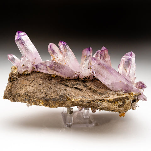 Amethyst Crystals on Matrix from Piedra Parada, Las Vigas de Ramirez, Veracruz, Mexico