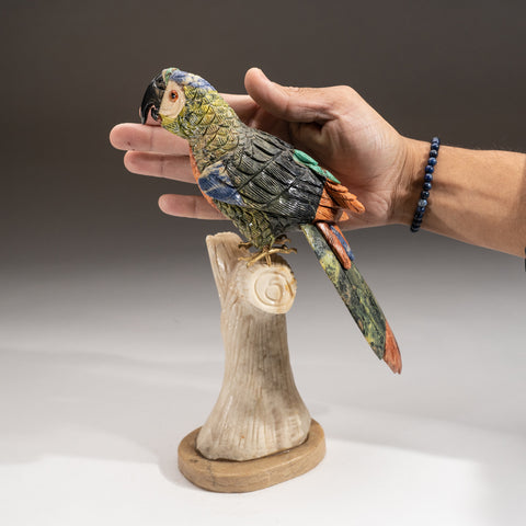 Hand Carved Bird PM Parrot