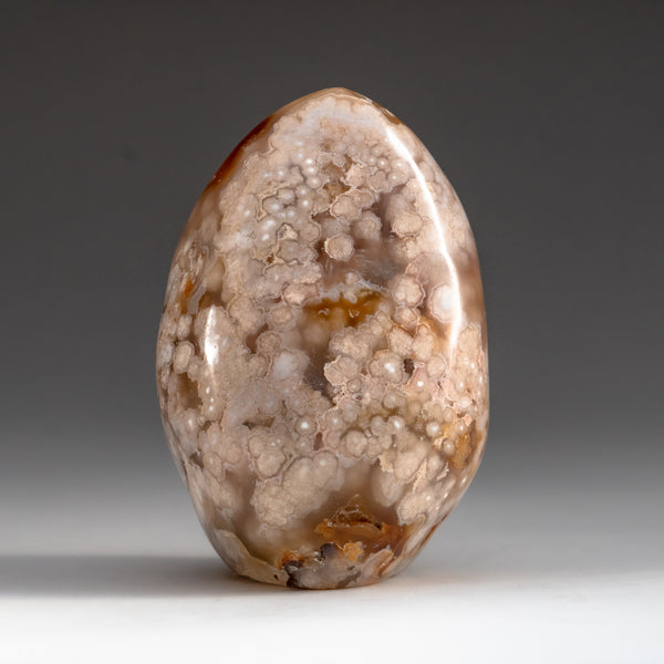 Polished Orbicular Jasper Freeform from Madagascar (1.8 lbs)