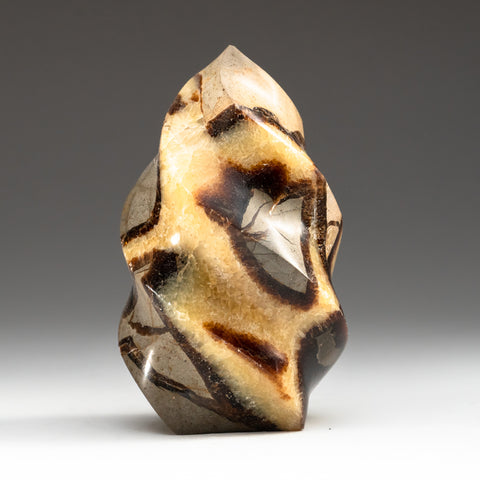 Polished Septarian Flame Freeform from Madagascar (2 lbs)