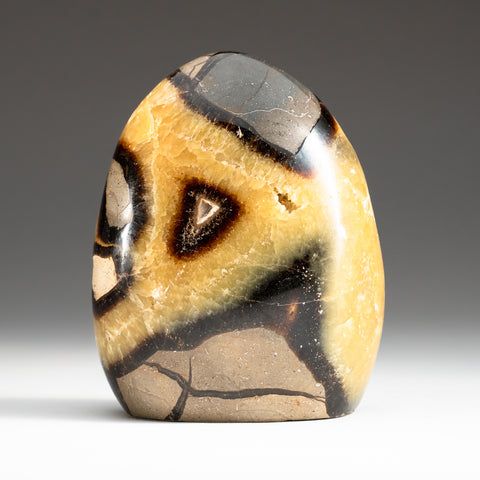 Polished Septarian Freeform from Madagascar (3.6 lbs)