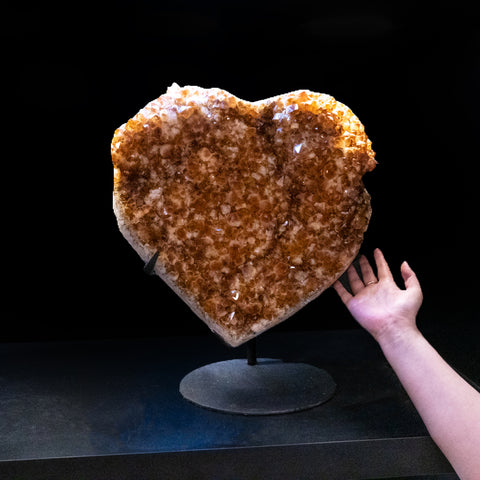 Massive Citrine Cluster Heart on Custom Metal (50 lbs)