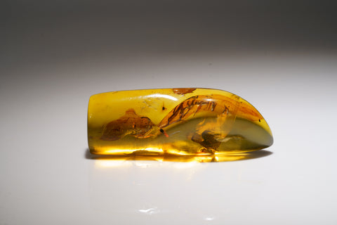 Amber from Chiapas, Mexico (33.6 grams)