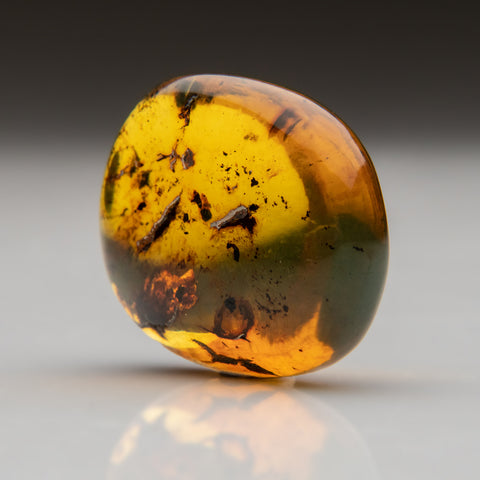 Amber from Baltic Sea, near Gdansk, Poland (11.1 grams)