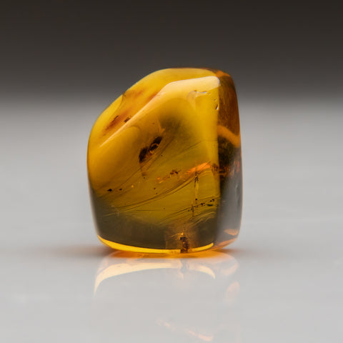 Amber from Baltic Sea, near Gdansk, Poland (10 grams)