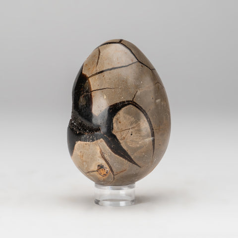 Septarian Druzy Egg from Madagascar (1.2 lbs)