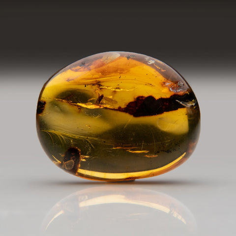 Amber from Baltic Sea, near Gdansk, Poland (8.8 grams)