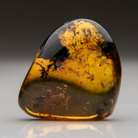 Amber from Baltic Sea, near Gdansk, Poland (17.3 grams)