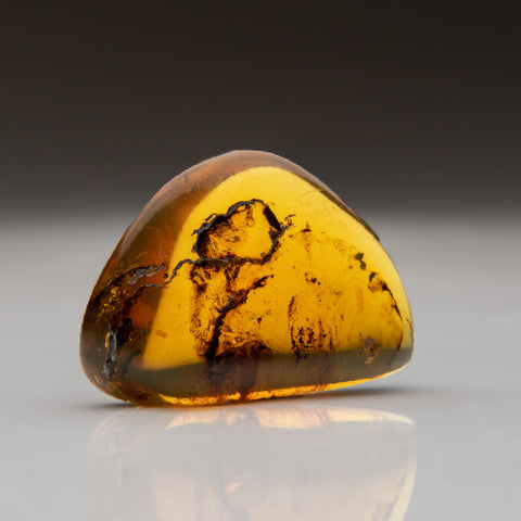 Amber from Baltic Sea, near Gdansk, Poland (9.3 grams)