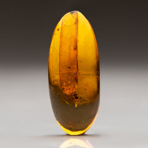 Amber from Dominican Republic (3.3 grams)