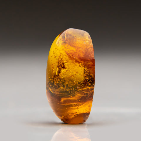 Amber from Dominican Republic (3.8 grams)