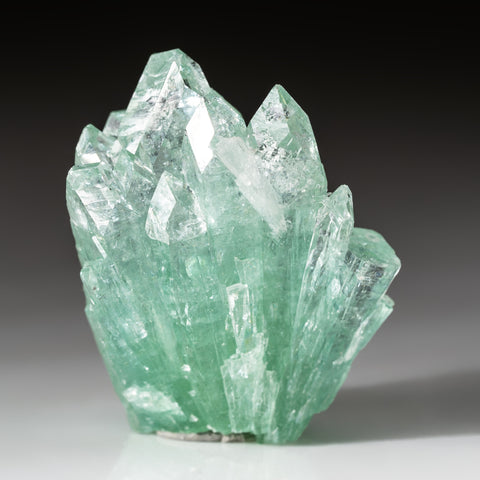 Green Fluorapophyllite From Pashan Hill Quarry, Poona District, Maharashtra, India