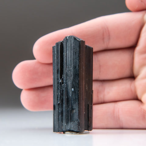 Black Tourmaline Crystal From Brazil (44.3 grams)