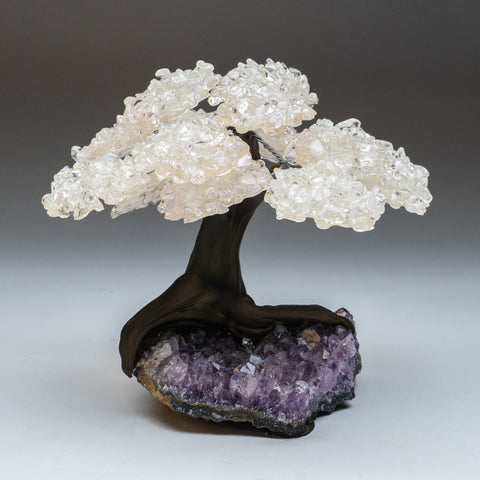 Large White Quartz Clustered Gemstone Tree on Amethyst Matrix (The Energy Tree)
