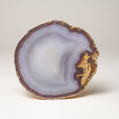 Light Blue Banded Agate Slice from Brazil (500.6 grams)