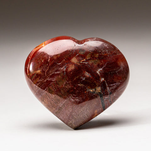 Petrified Wood Heart from Madagascar (193.8 grams)