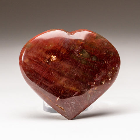 Petrified Wood Heart from Madagascar (178.7 grams)