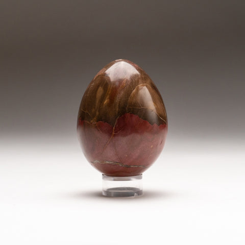 Polished Petrified Wood Egg from Madagascar (313.6 grams)