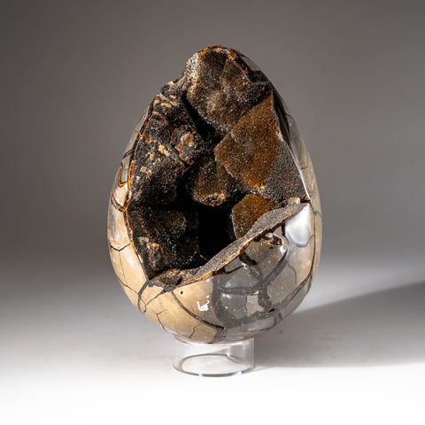 Septarian Druzy Egg from Madagascar (13.6 lbs)