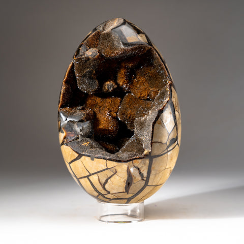 Septarian Druzy Egg from Madagascar (13.5 lbs)