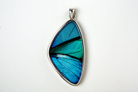 Real Butterfly Wing Pendant in Sterling Silver