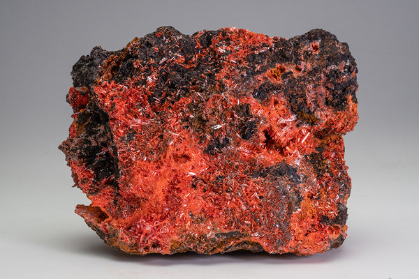 Crocoite From Red Lead Mine, Dundas, Tasmania, Australia