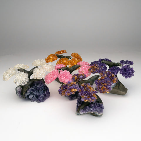 Small Five Set of Gemstone Trees on Amethyst Matrix