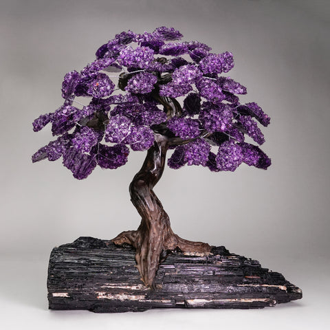 Amethyst Clustered Gemstone Tree (84 petals) on Black Tourmaline Matrix (4XL)